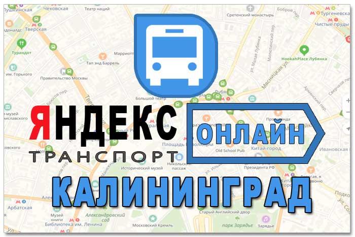 Яндекс транспорт Калининград онлайн